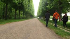 In the Gardens of Versailles.
